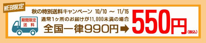 秋の送料キャンペーン